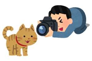camera_cat